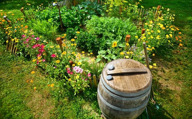 Holzfass im Garten vor Blumenbeet